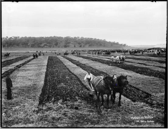 New Old Stock - bild på en bonde som plogar sina fält.