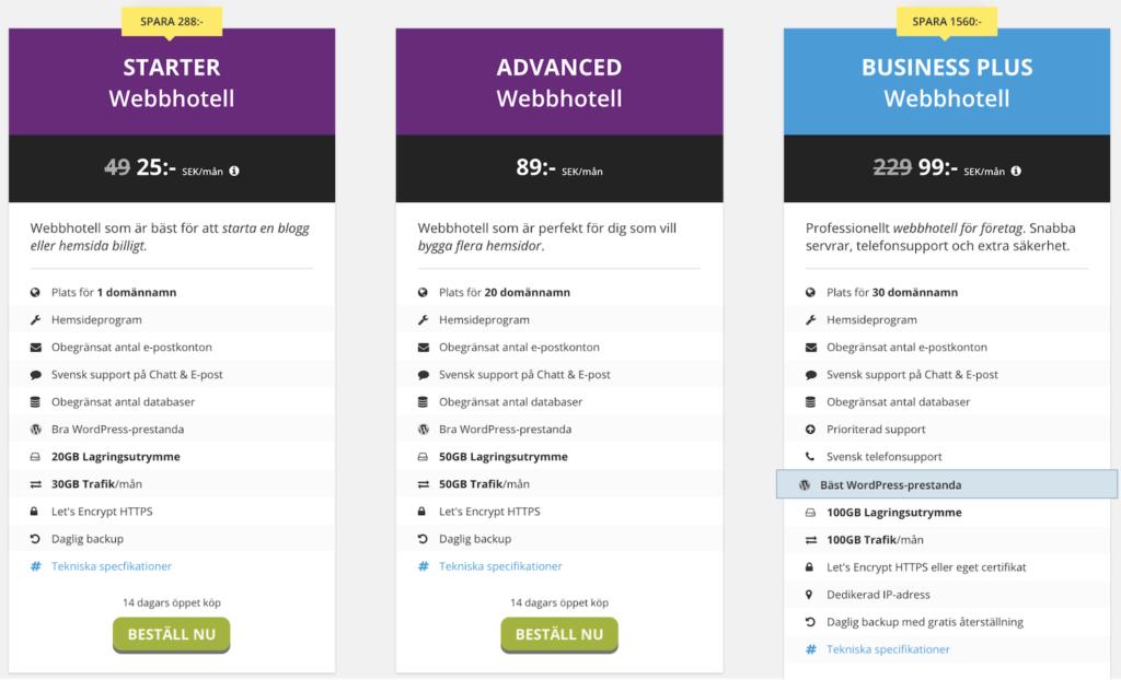 Surftown erbjuder 3 olika paket för din hemsida.