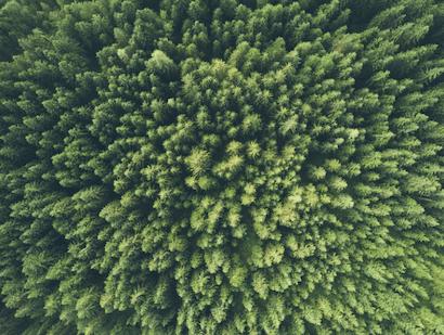 Miljön är som vanligt en viktig aspekt att tänka på.